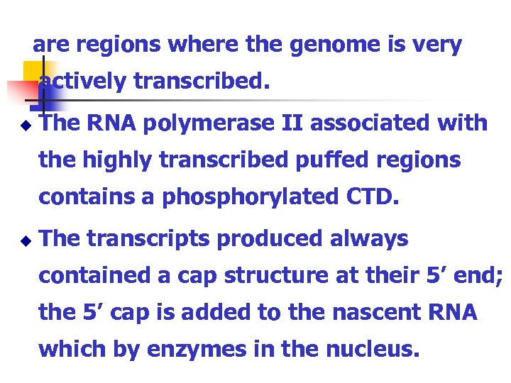 are regions where the genome is very actively transcribed. u The RNA polymerase II