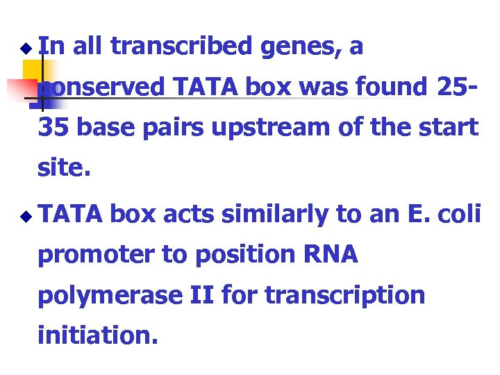 u In all transcribed genes, a conserved TATA box was found 2535 base pairs