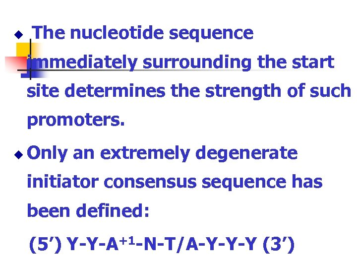 u The nucleotide sequence immediately surrounding the start site determines the strength of such