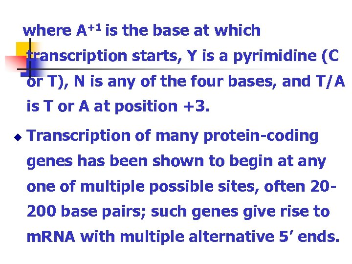 where A+1 is the base at which transcription starts, Y is a pyrimidine (C