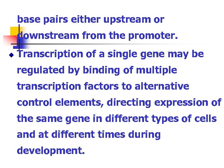 base pairs either upstream or downstream from the promoter. u Transcription of a single