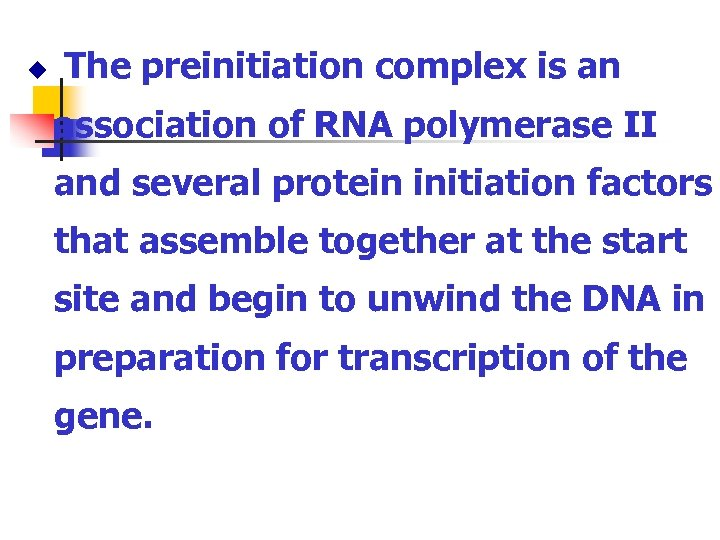 u The preinitiation complex is an association of RNA polymerase II and several protein