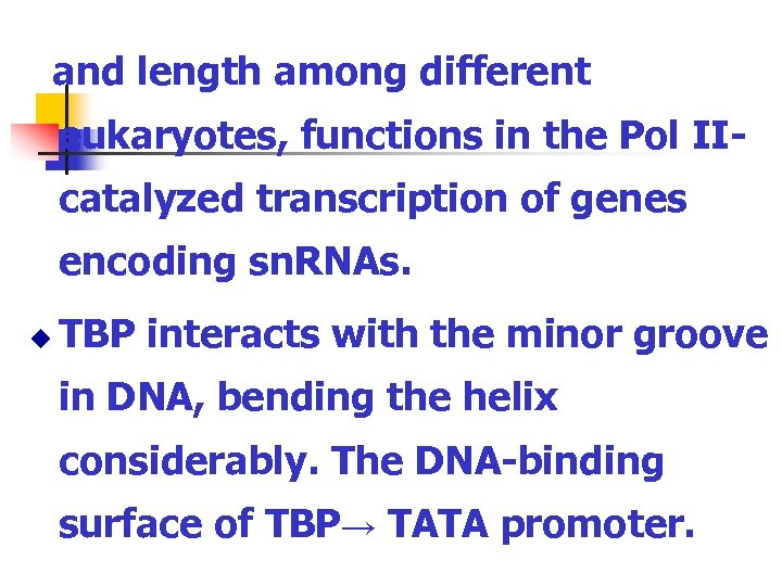 and length among different eukaryotes, functions in the Pol IIcatalyzed transcription of genes encoding
