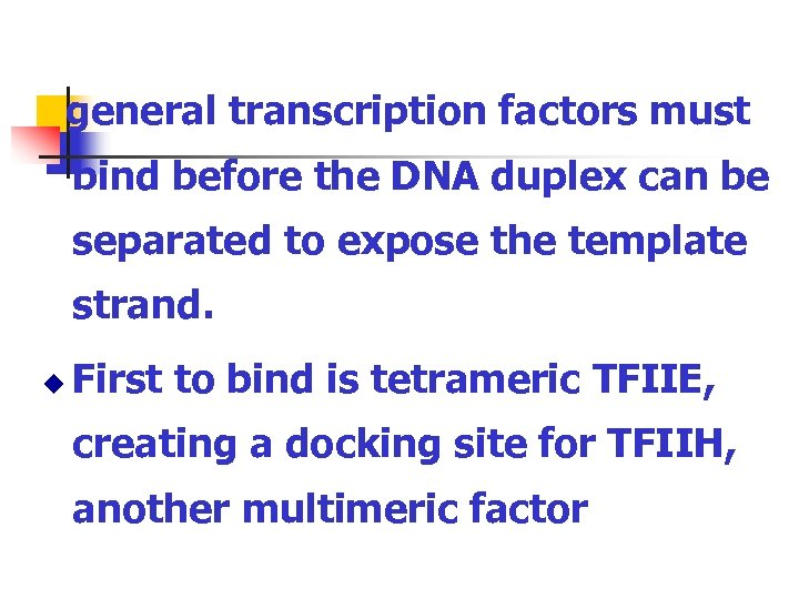 general transcription factors must bind before the DNA duplex can be separated to expose