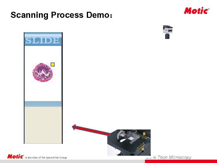 Scanning Process Demo: Scanning