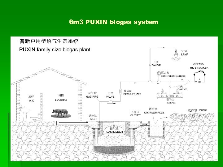 6 m 3 PUXIN biogas system