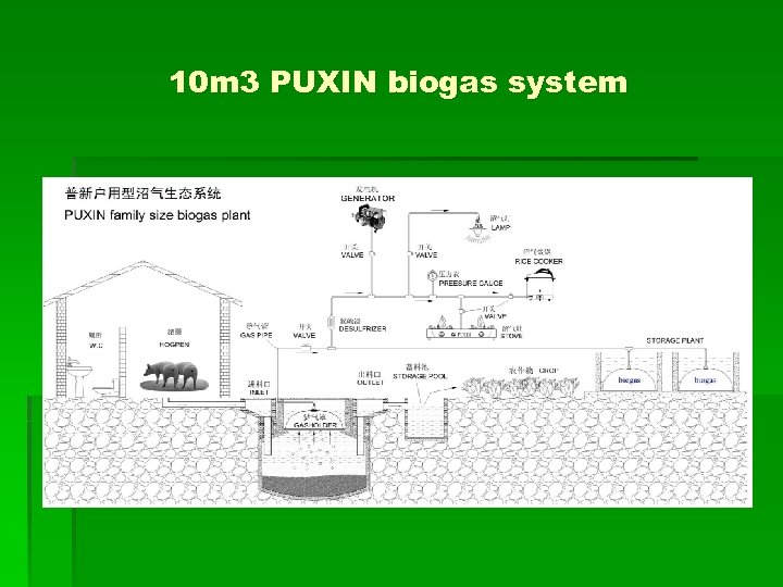 10 m 3 PUXIN biogas system