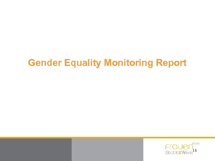 Gender Equality Monitoring Report 13