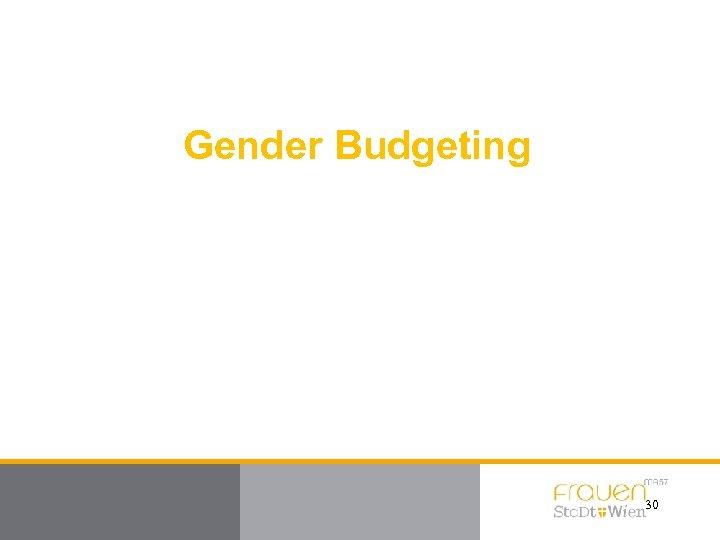 Gender Budgeting 30