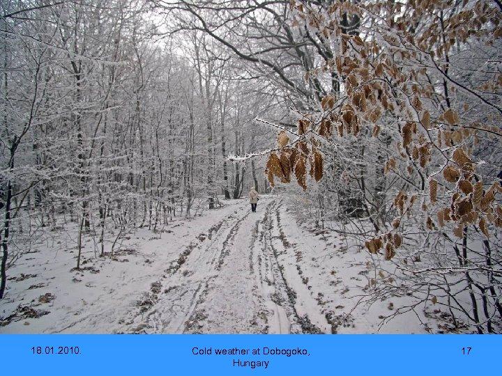 18. 01. 2010. Cold weather at Dobogoko, Hungary 17