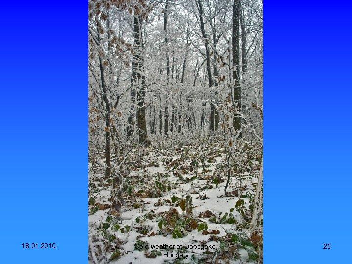 18. 01. 2010. Cold weather at Dobogoko, Hungary 20