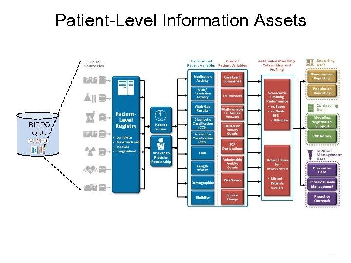 Patient-Level Information Assets BIDPO QDC - -