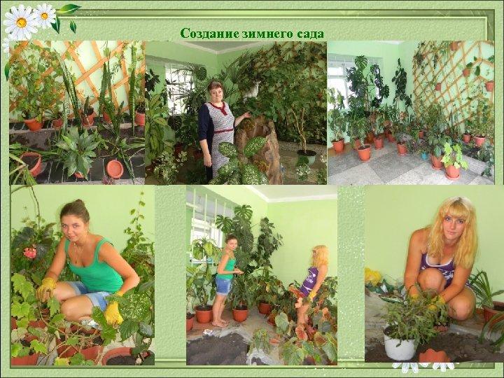 Создание зимнего сада