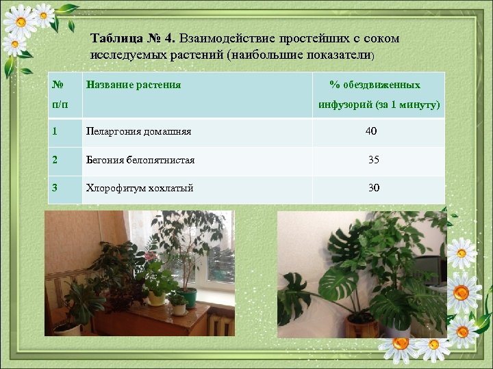 Таблица № 4. Взаимодействие простейших с соком исследуемых растений (наибольшие показатели) № Название растения