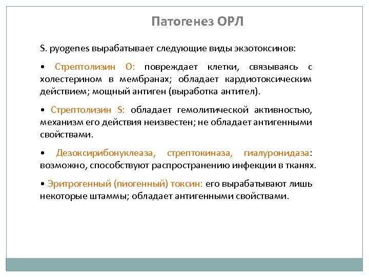 Патогенез ОРЛ S. pyogenes вырабатывает следующие виды экзотоксинов: • Стрептолизин О: повреждает клетки, связываясь