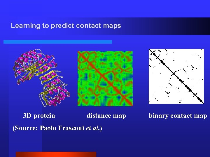 Learning to predict contact maps 3 D protein distance map (Source: Paolo Frasconi et