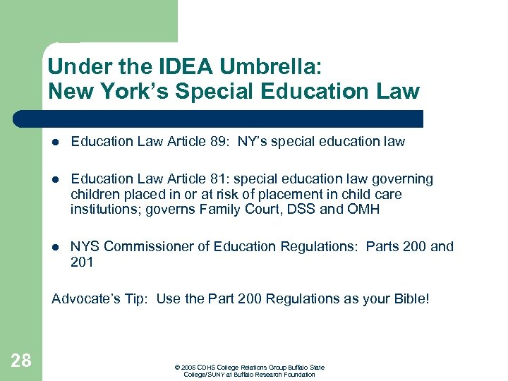 Under the IDEA Umbrella: New York's Special Education Law Article 89: NY's special education