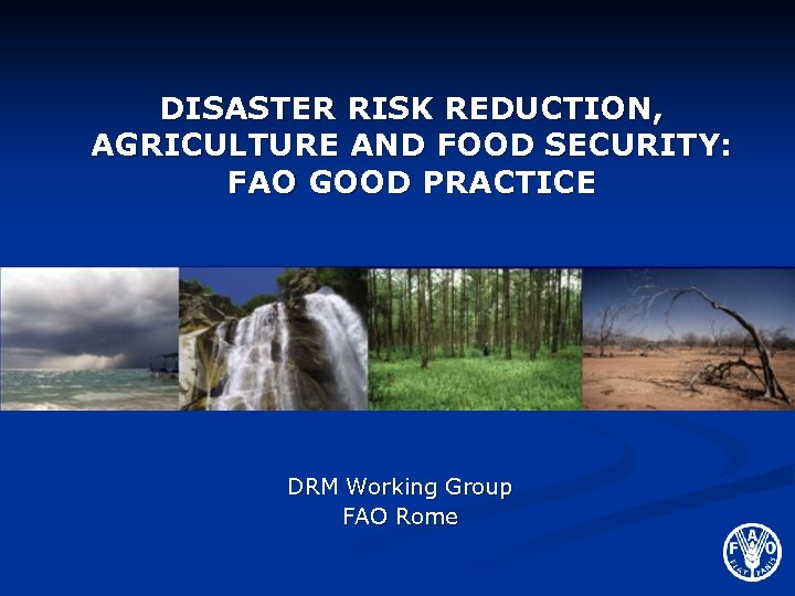 DISASTER RISK REDUCTION, AGRICULTURE AND FOOD SECURITY: FAO GOOD PRACTICE DRM Working Group FAO