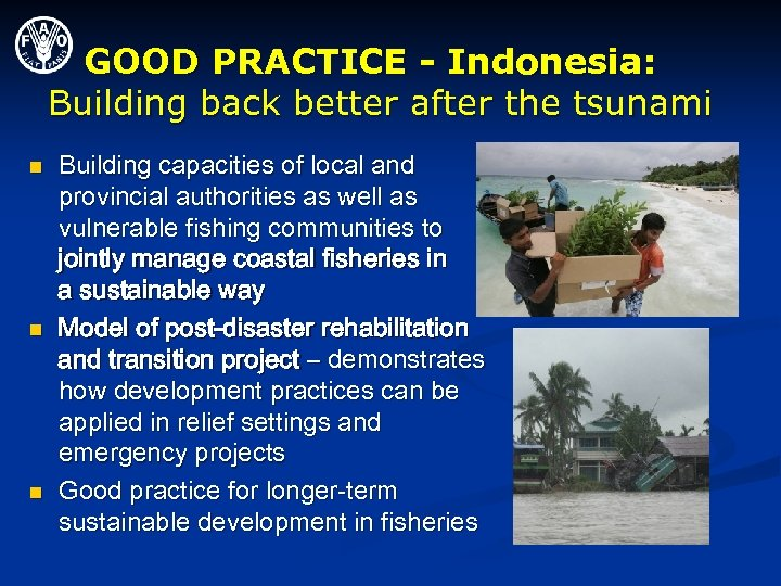 GOOD PRACTICE - Indonesia: Building back better after the tsunami n n n Building