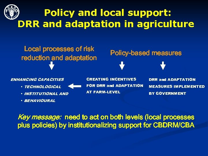 Policy and local support: DRR and adaptation in agriculture Local processes of risk reduction