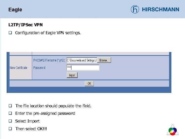 Eagle L 2 TP/IPSec VPN q Configuration of Eagle VPN settings. q The file