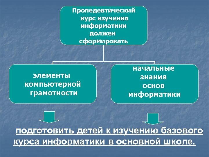 Пропедевтический курс изучения информатики должен сформировать элементы компьютерной грамотности начальные знания основ информатики подготовить