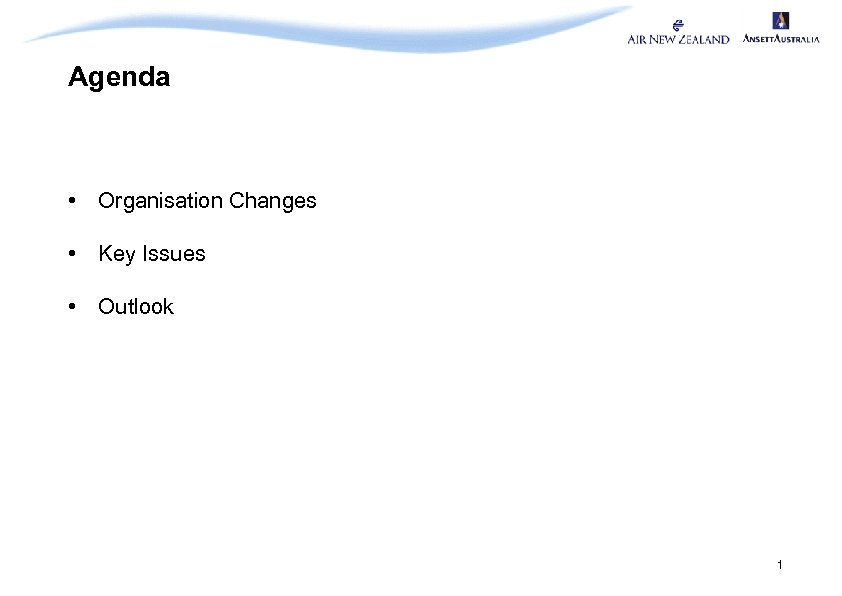 Agenda • Organisation Changes • Key Issues • Outlook 1