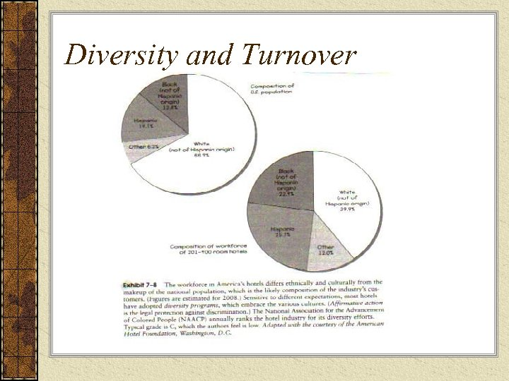 Diversity and Turnover