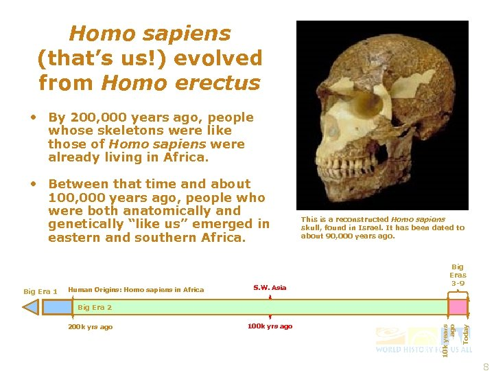 Homo sapiens (that's us!) evolved from Homo erectus • By 200, 000 years ago,