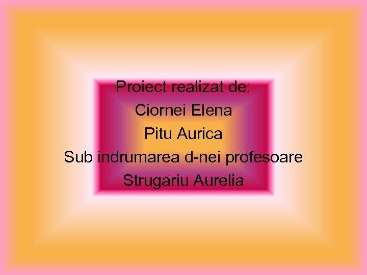 Proiect realizat de: Ciornei Elena Pitu Aurica Sub indrumarea d-nei profesoare Strugariu Aurelia