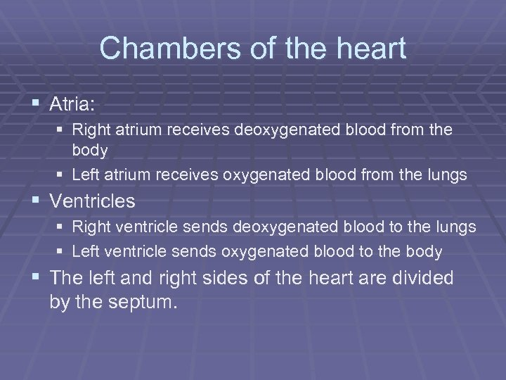 Chambers of the heart § Atria: § Right atrium receives deoxygenated blood from the