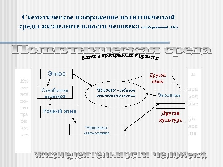 Схематическое изображение полиэтнической среды жизнедеятельности человека (по Бережновой Л. Н. ) Этнос Ест ест