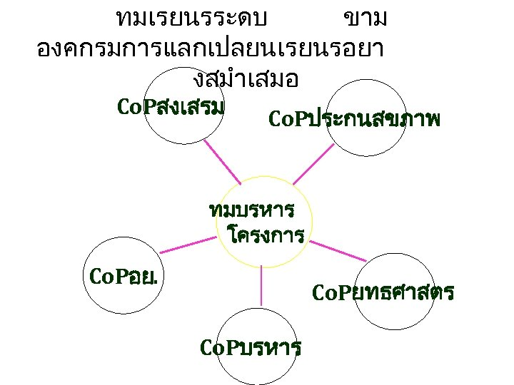 ทมเรยนรระดบ ขาม องคกรมการแลกเปลยนเรยนรอยา งสมำเสมอ Co. Pสงเสรม Co. Pประกนสขภาพ ทมบรหาร โครงการ Co. Pอย. Co. Pยทธศาสตร