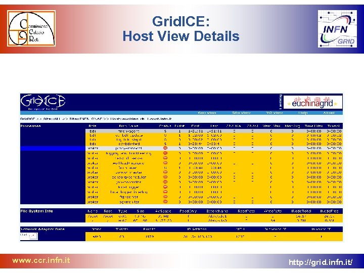Grid. ICE: Host View Details www. ccr. infn. it http: //grid. infn. it/