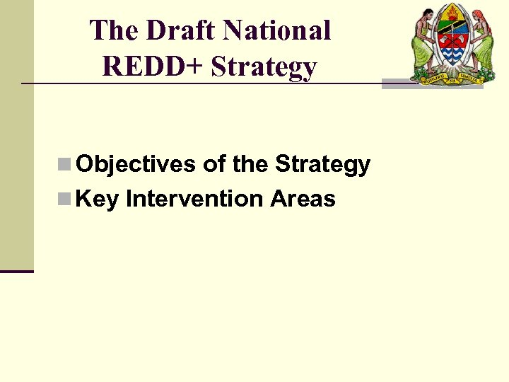 The Draft National REDD+ Strategy n Objectives of the Strategy n Key Intervention Areas