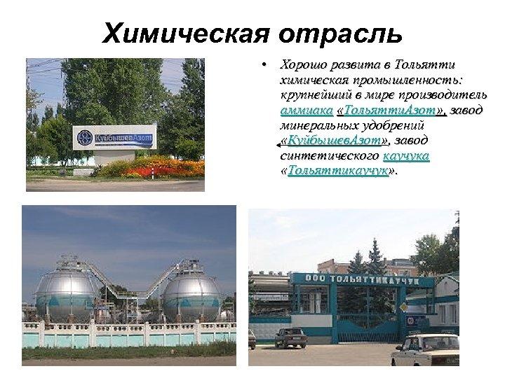 Химическая отрасль • Хорошо развита в Тольятти химическая промышленность: крупнейший в мире производитель аммиака