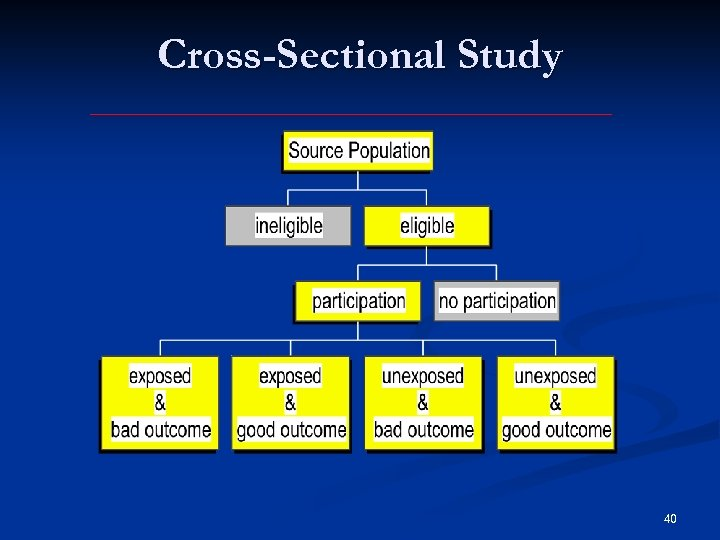 Cross-Sectional Study 40