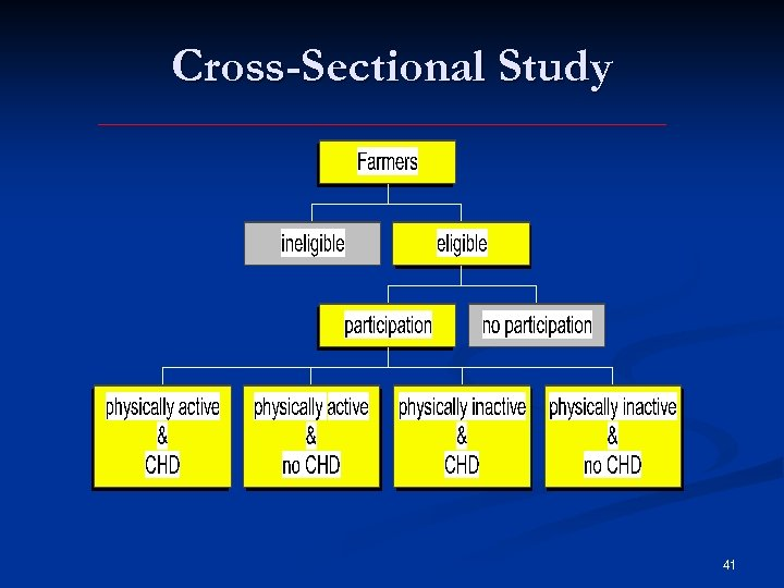 Cross-Sectional Study 41