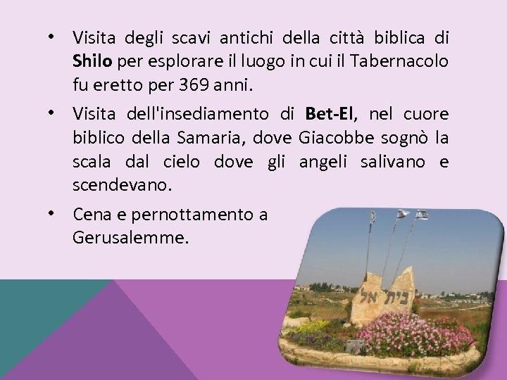 • Visita degli scavi antichi della città biblica di Shilo per esplorare il