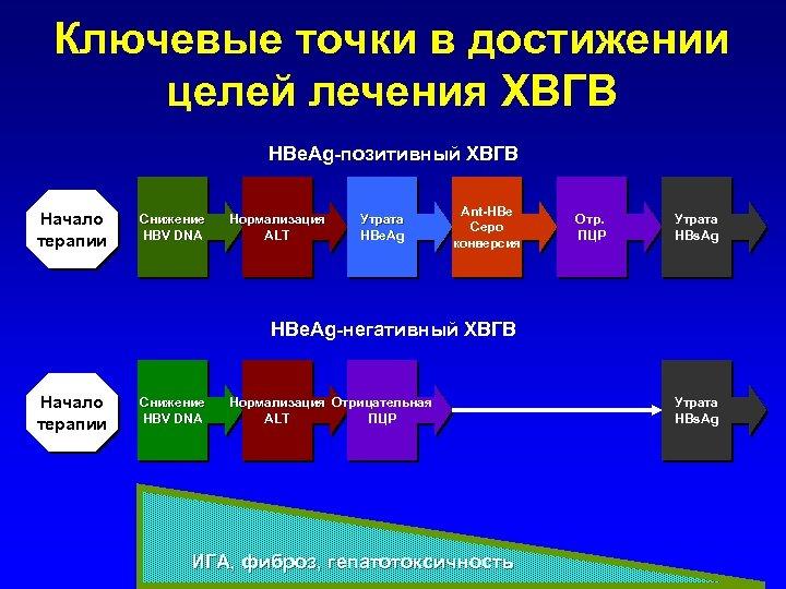 Ключевые точки в достижении целей лечения ХВГВ HBe. Ag-позитивный ХВГВ Начало терапии Снижение HBV