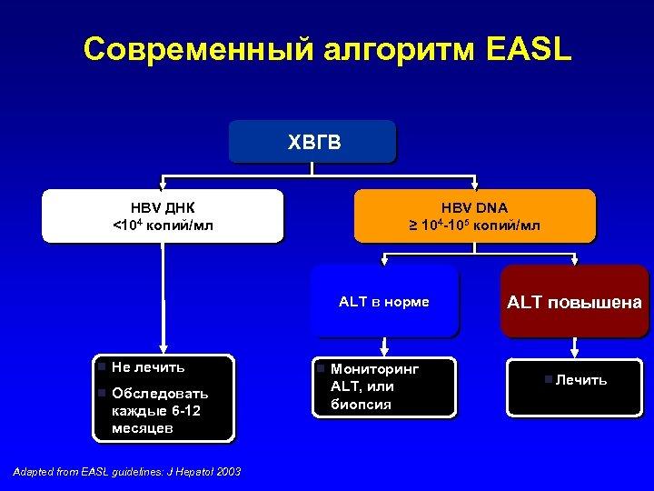 Современный алгоритм EASL ХВГВ HBV ДНК <104 копий/мл HBV DNA ≥ 104 -105 копий/мл