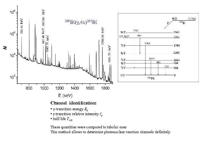209 Bi(γ, 4 n)205 Bi Channel identification: • γ-transition energy Eγ • γ-transition relative