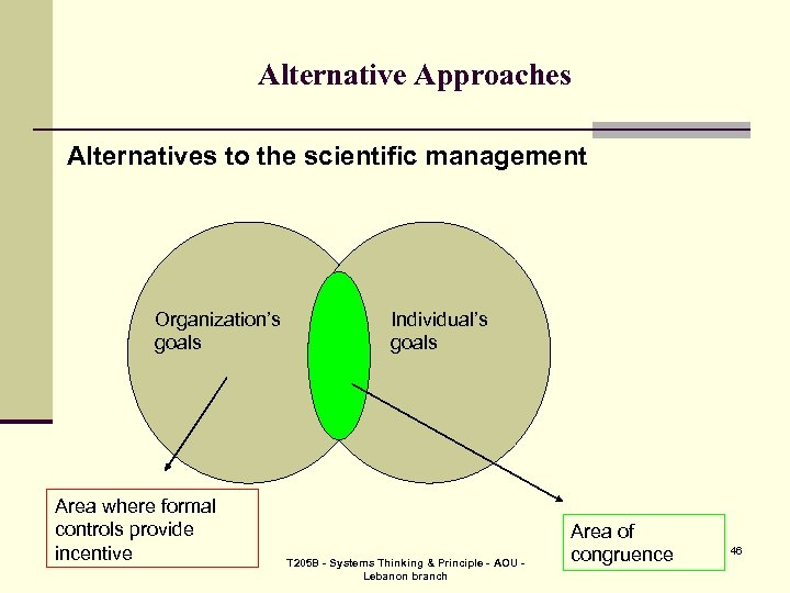 Alternative Approaches Alternatives to the scientific management Organization's goals Area where formal controls provide