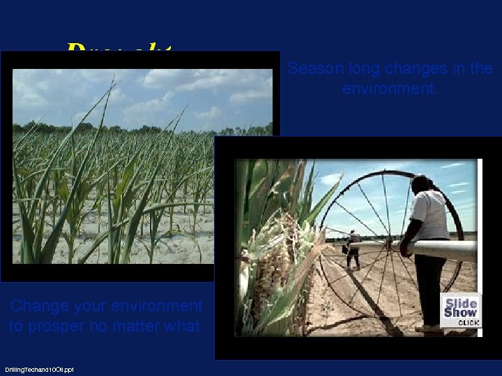 Drought Change your environment to prosper no matter what. Drilling. Techand 10 Oil. ppt