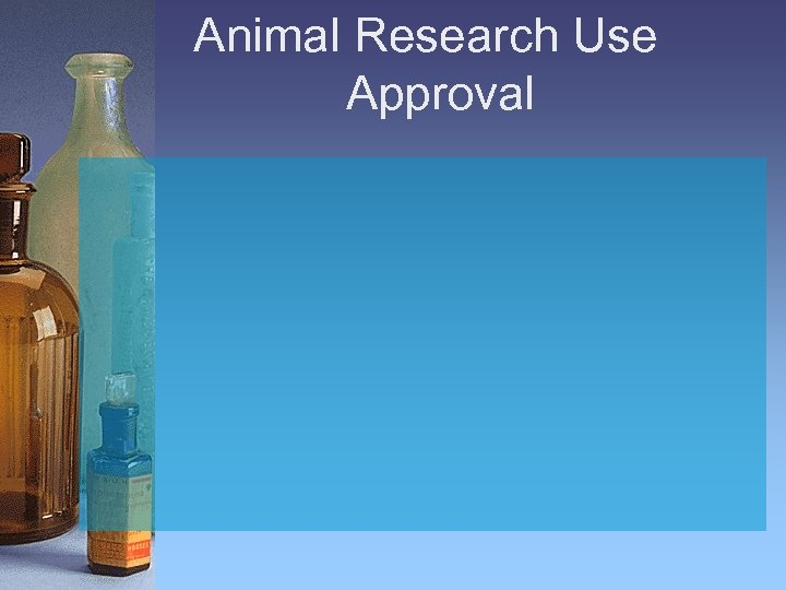 Animal Research Use Approval