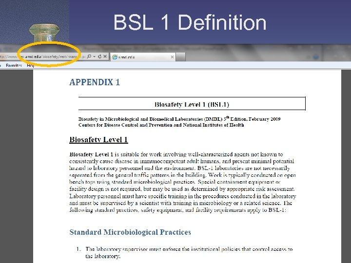 BSL 1 Definition