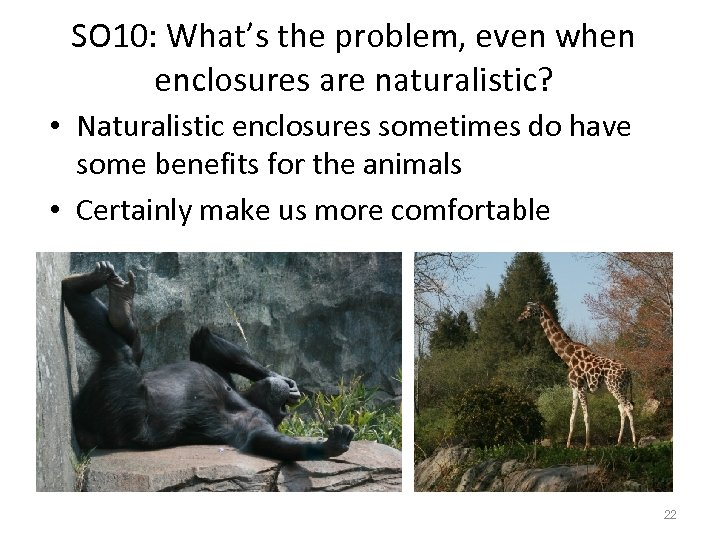 SO 10: What's the problem, even when enclosures are naturalistic? • Naturalistic enclosures sometimes