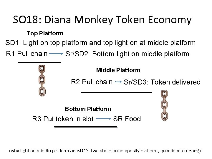 SO 18: Diana Monkey Token Economy Top Platform SD 1: Light on top platform