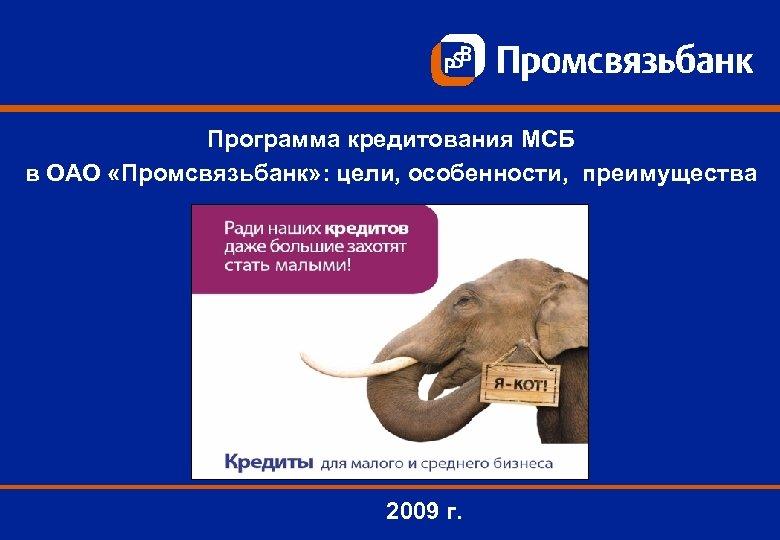 Программа кредитования МСБ в ОАО «Промсвязьбанк» : цели, особенности, преимущества 2009 г.