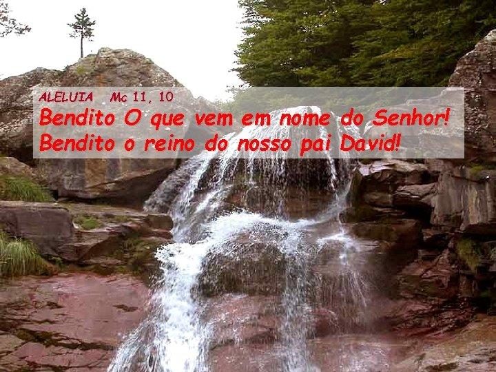 ALELUIA Mc 11, 10 Bendito O que vem em nome do Senhor! Bendito o